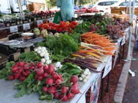Mount Claremont Farmers Market, Mount Claremont, Western Australia