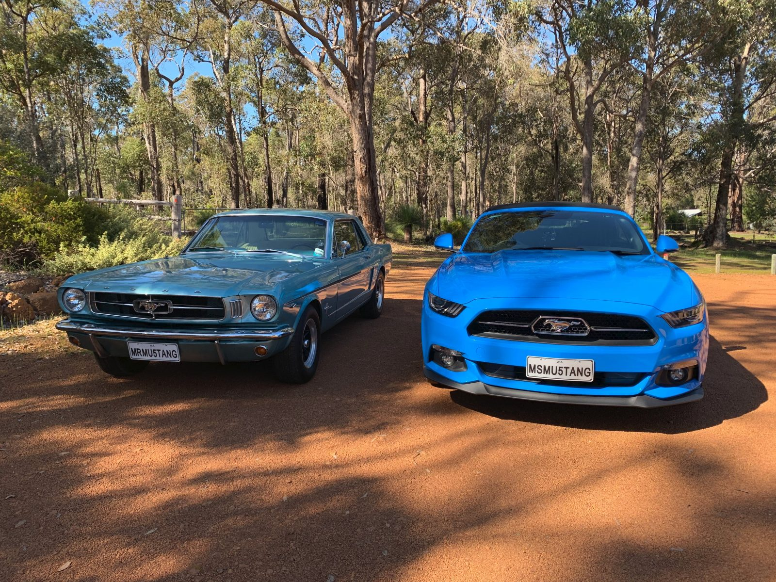 Mr Mustang Hire, Margaret River, Western Australia