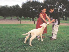 Mundijong, Western Australia
