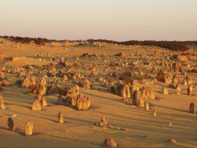 Nambung National Park, Cervantes, Western Australia