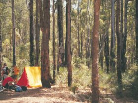 Lane Poole Reserve, Western Australia