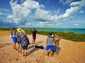 Narlijia Cultural Tours, Broome, Western Australia