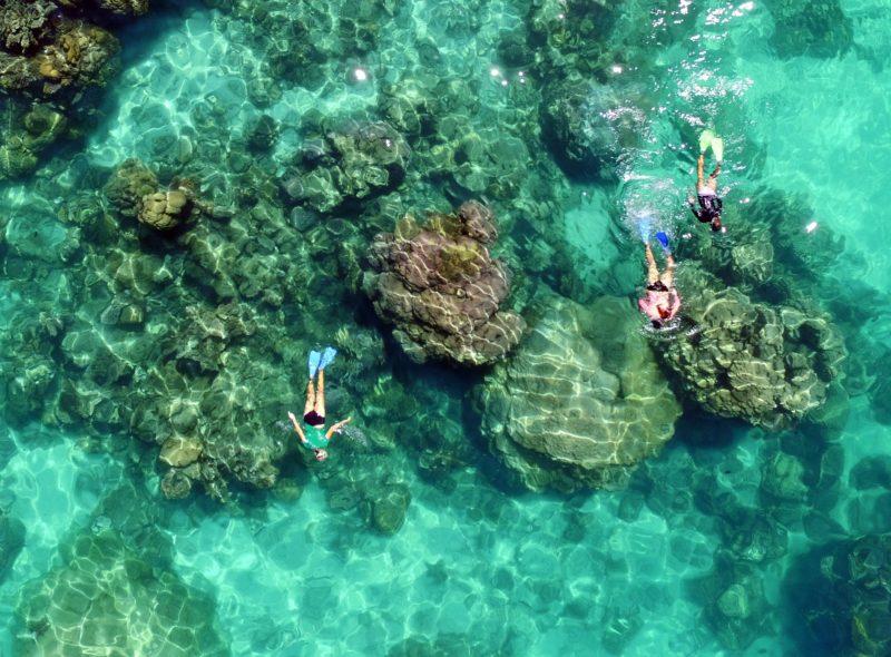Ningaloo Ecology Cruises, Exmouth, Western Australia