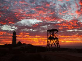 Ningaloo Lighthouse Holiday Park, Exmouth, Western Australia