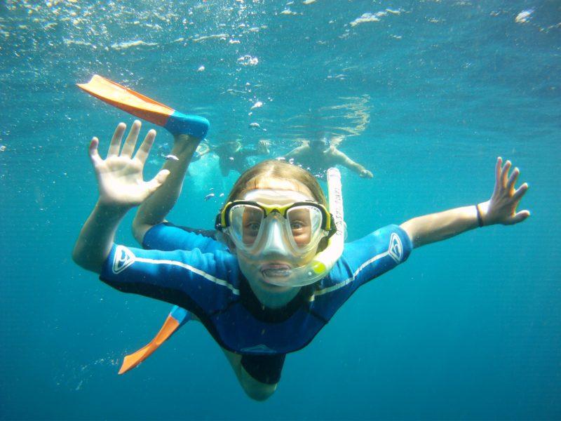 Ningaloo Whaleshark Swim, Exmouth, Western Australia