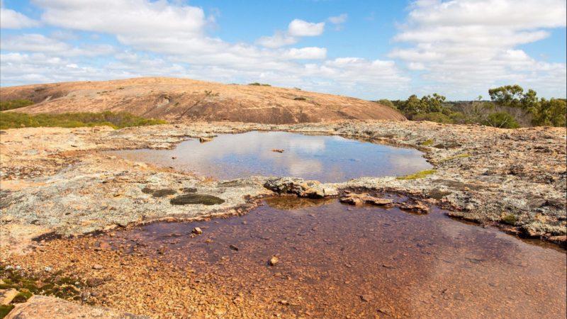 Njaki Njaki Aboriginal Cultural Tours, Merredin, Western Australia