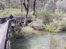 Oak Grove Walk, Balingup, Western Australia