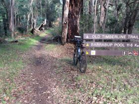 Old Timberline and Sidings Rail Trails, Nannup, Western Australia