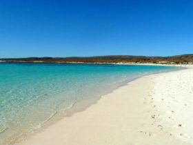 Osprey Bay Campground, Cape Range National Park, Western Australia