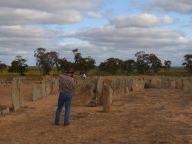 Pergandes Sheepyards, Bencubbin, Western Australia