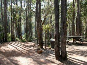 Perth Hills Centre Campground at Beelu National Park, Perth, Western Australia