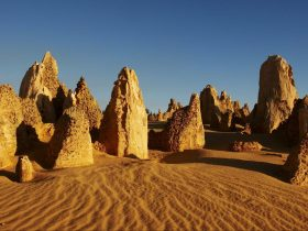 Pinnacles Desert Discovery Centre, Nambung National Park, Western Australia