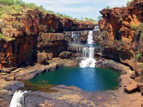 Prince Regent Nature Reserve, Derby, Western Australia