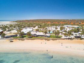 RAC Monkey Mia Dolphin Resort, Monkey Mia, Western Australia