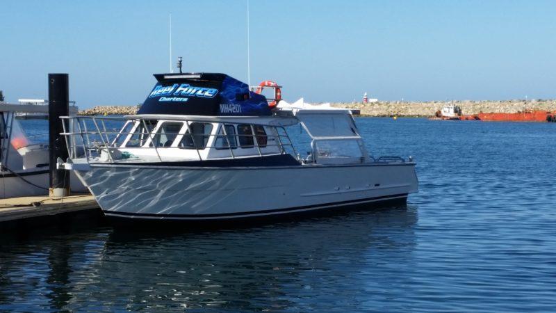Reel Force, Fishing Machine,