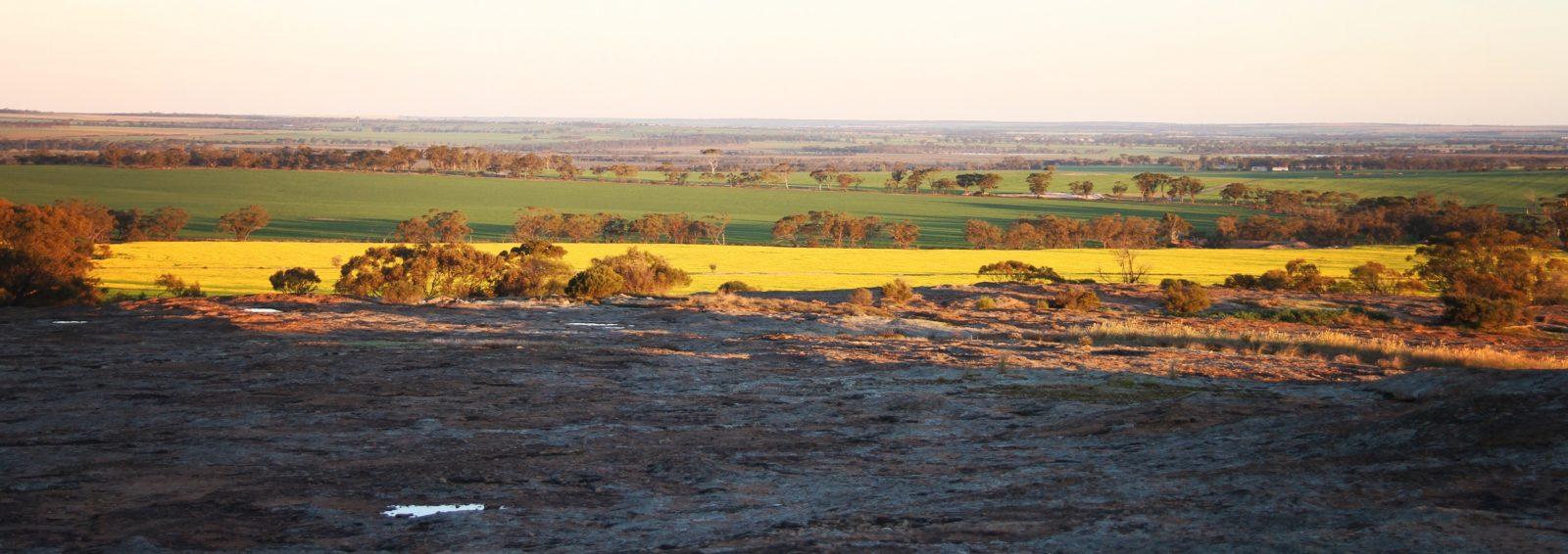 Roe Lookout, Narembeen, Western Australia