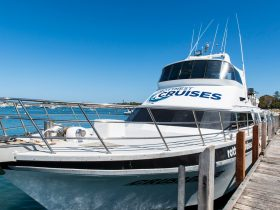 Rottnest Cruises, Rottnest, Western Australia