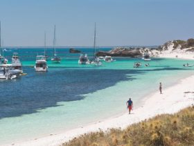 Rottnest Island Authority Holiday Units, Longreach Bay, Rottnest Island, Western Australia