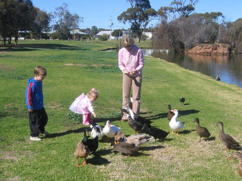 Roy Little Park, Merredin, Western Australia