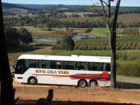 Royal Gala Tours, Mullalyup, Western Australia