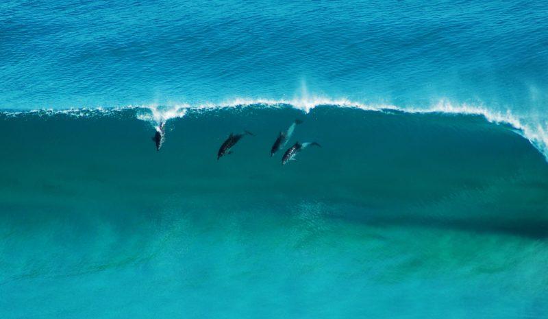 Sandpatch, Albany, Western Australia
