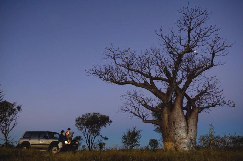 Scenic Drives - Bunbury Collie Donnybrook, Bunbury, Western Australia