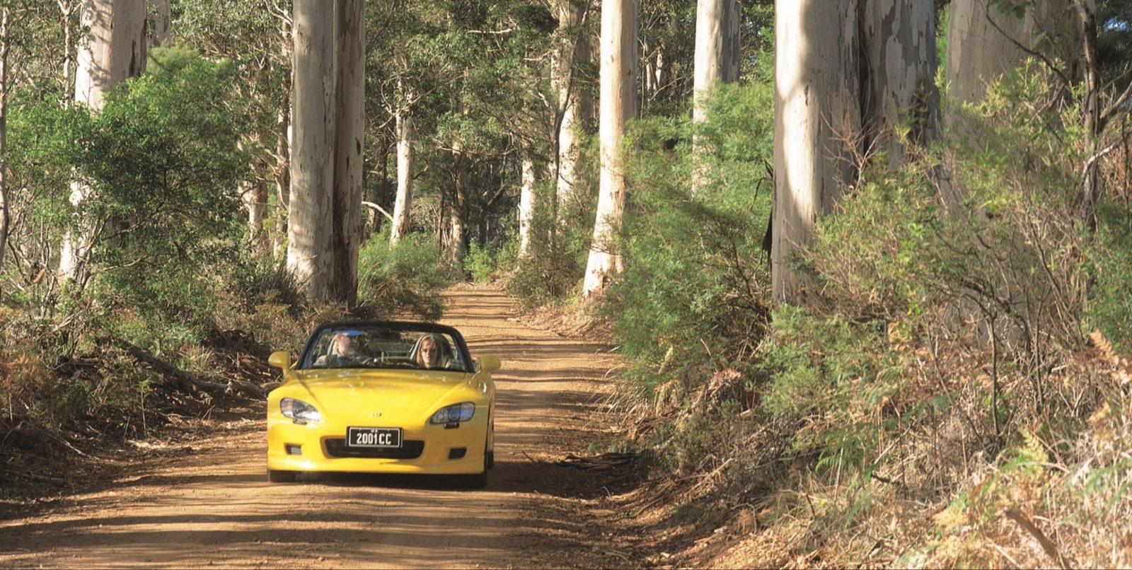 Scotsdale Tourist Drive, Denmark, Western Australia