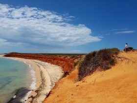 Shark Bay 4WD, Shark Bay, Western Australia