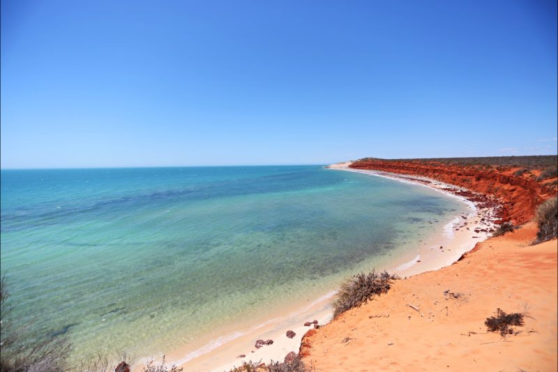 Shark Bay Coastal Tours, Denham, Western Australia