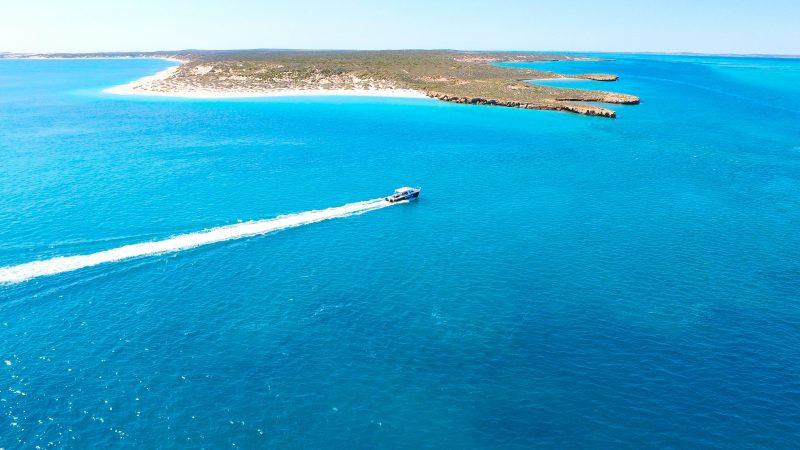 Shark Bay Dive and Marine Safaris, Shark Bay, Western Australia