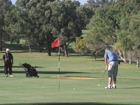 Spalding Park, Geraldton, Western Australia