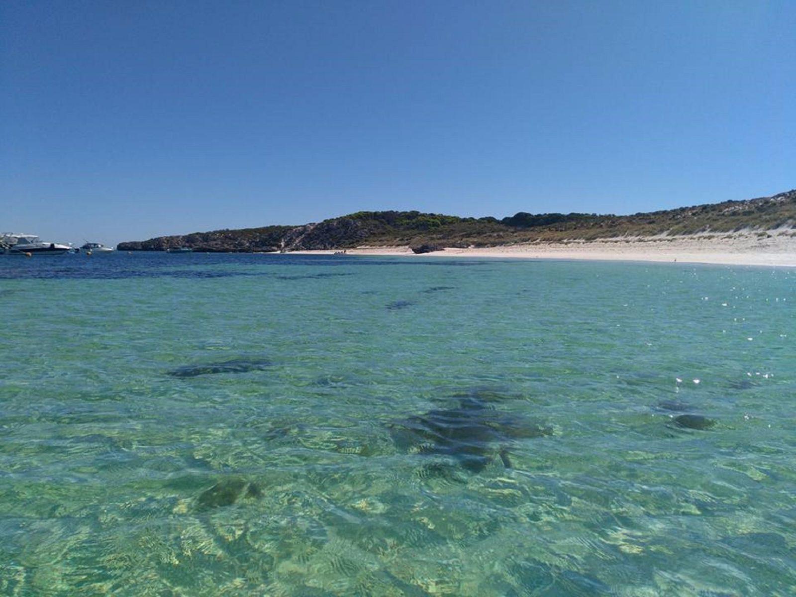 Stark Bay