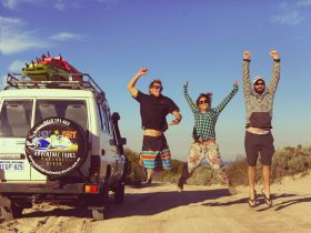 Surf N' Dirt Adventure Tours, Margaret River, Western Australia