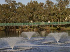 Suspension Bridge, Northam, Western Australia