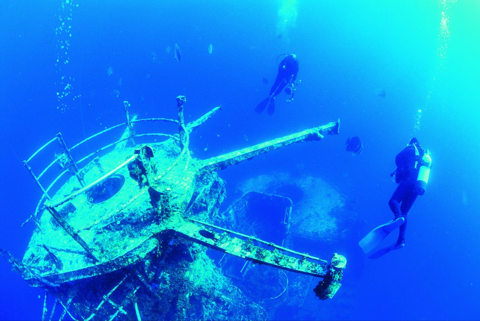 Swan Dive Wreck, Dunsborough, Western Australia