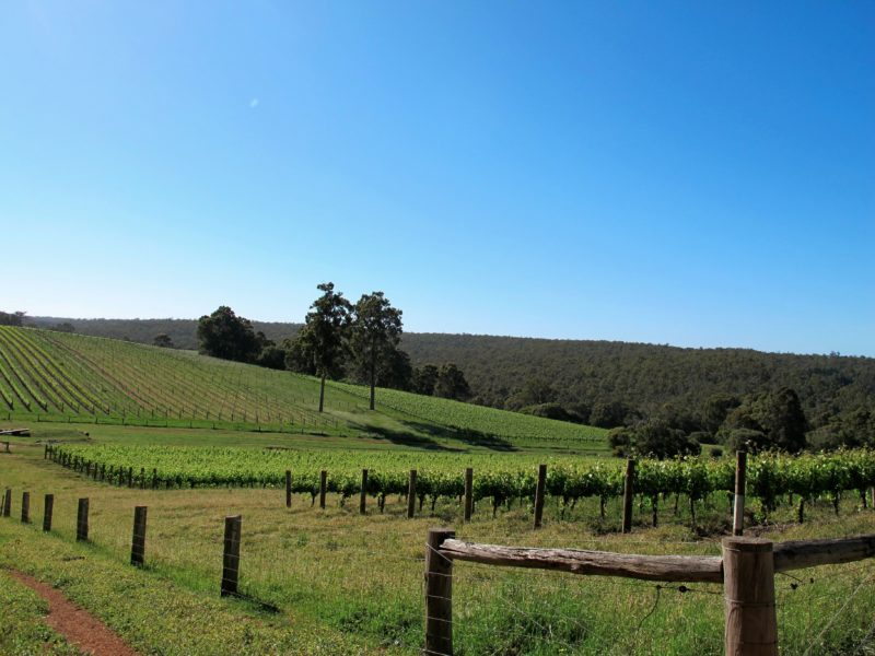 Talisman Wines, Burekup, Western Australia