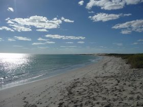 Tarcoola Beach, Geraldton, Western Australia