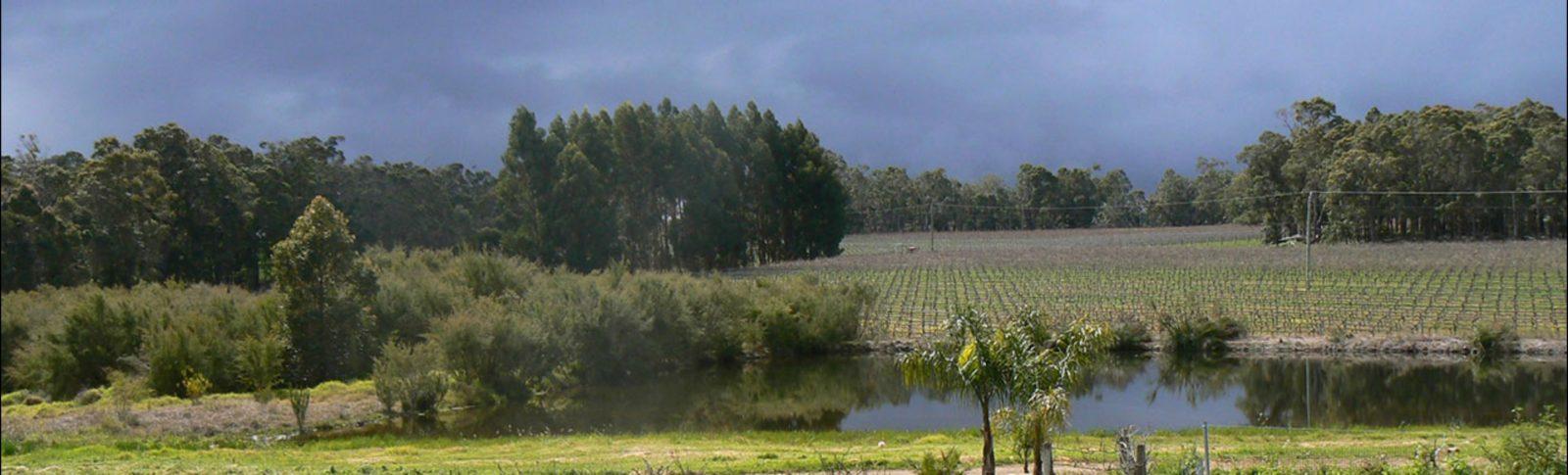 Alchemists Wines, Cowaramup, Western Australia