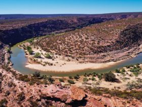 The Loop and Z Bend, Kalbarri, Western Australia