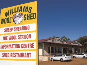 The Williams Woolshed, Williams, Western Australia