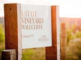 The Wallcliffe Vineyard