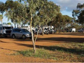 Three Springs Short Stay Caravan Park, Three Springs, Western Australia