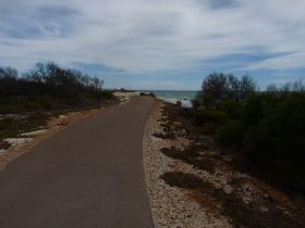 Trail at Island Point