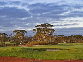 TX Civil and Logistics Western Australia PGA Championship, Kalgoorlie, Western Australia