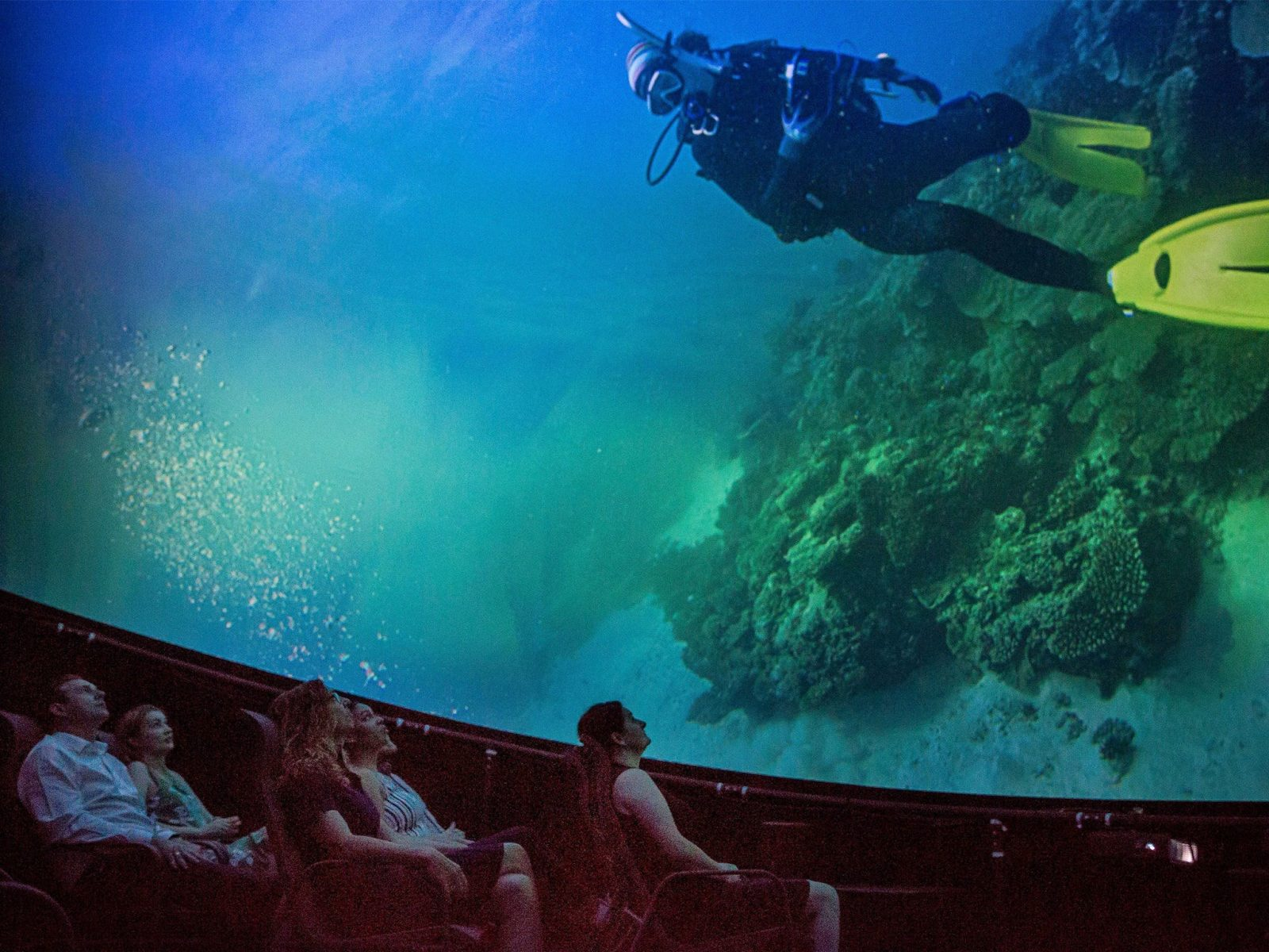 Under the Dome: Cinema Experience presents Whale Super Highway, Fremantle, Western Australia