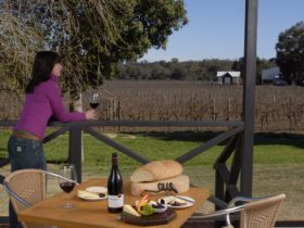 Upper Reach Winery Spa Cottage, Baskerville, Western Australia