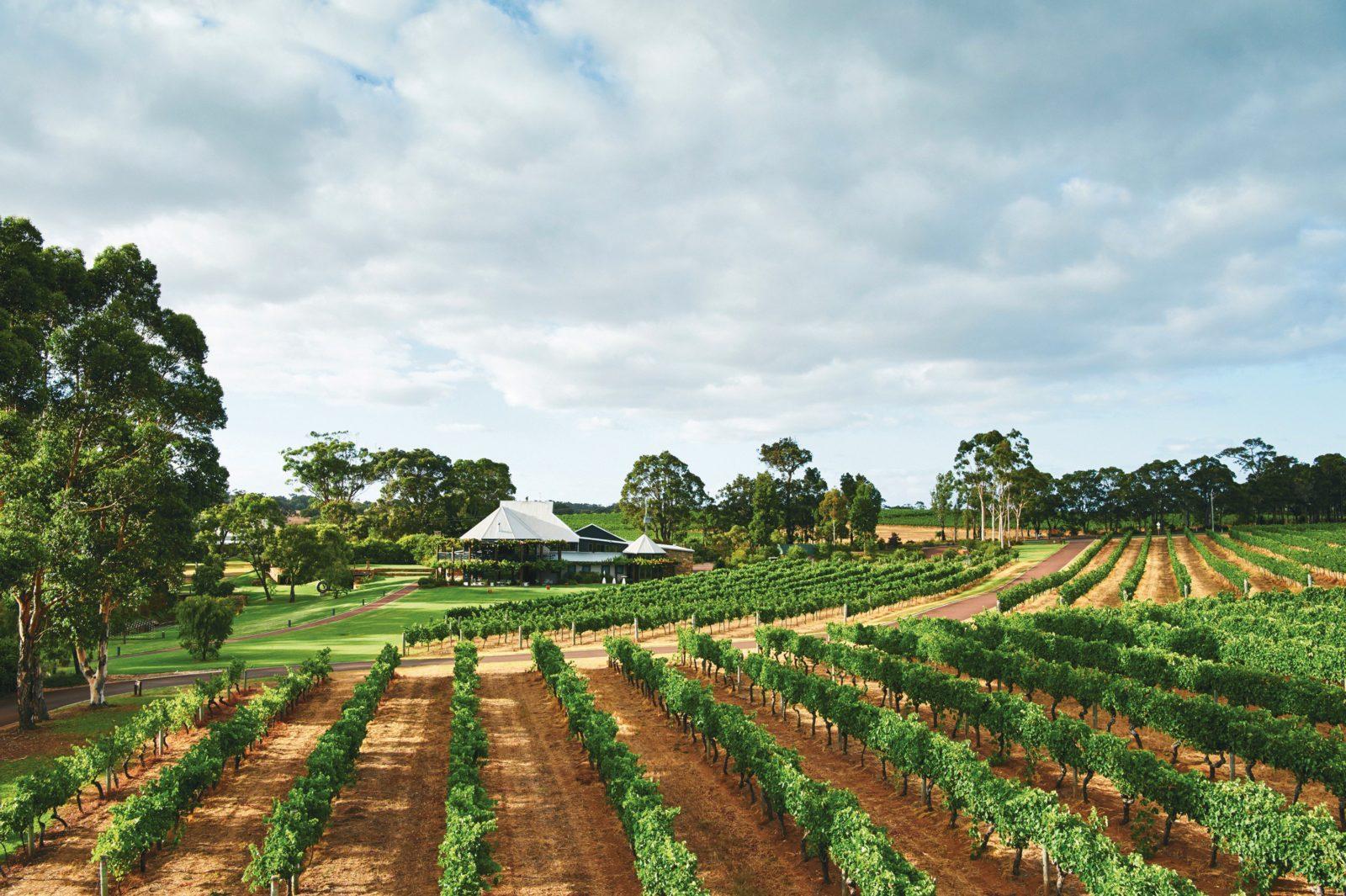 Vasse Felix Estate, Cowaramup, Western Australia