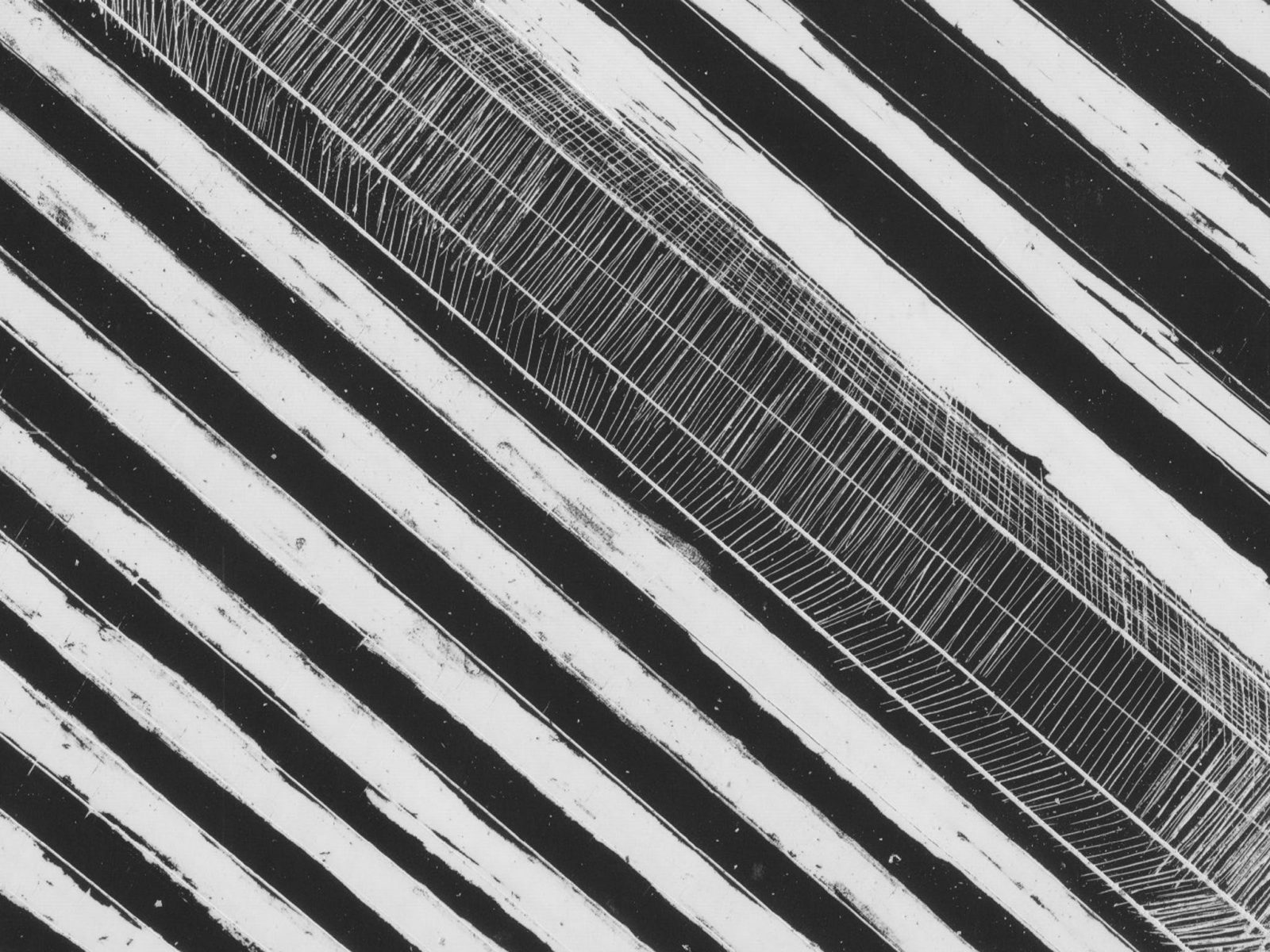 WA Now – Tom Mùller: Monolith Scores, Perth, Western Australia