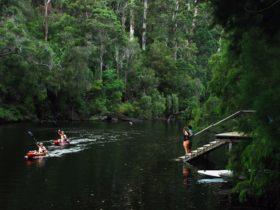 Warren National Park, Yeagarup, Western Australia