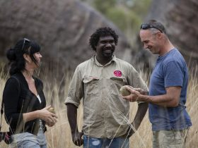 Waringarri Aboriginal Art and Culture Tours, Kununurra, Western Australia